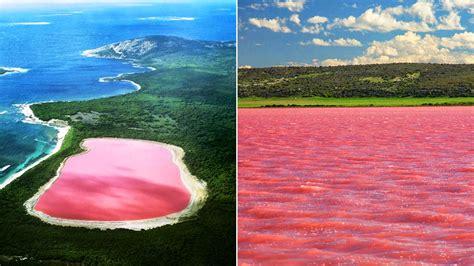 pink lake australia miscellaneous views the pink lake in australia