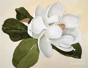 Famous Flower Art - magnolia bloom painting by nancy kane chapman