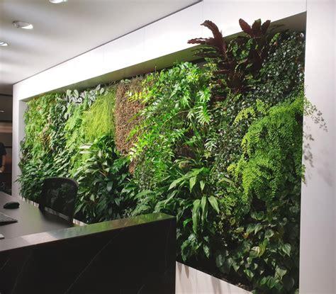 emirates house indoor green wall fytogreen australia