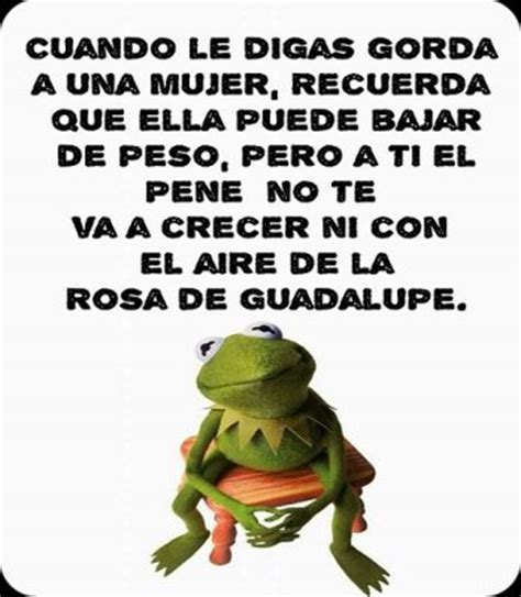 imagenes para perfil de q imagenes para perfil de whatsapp con frases chistosas y