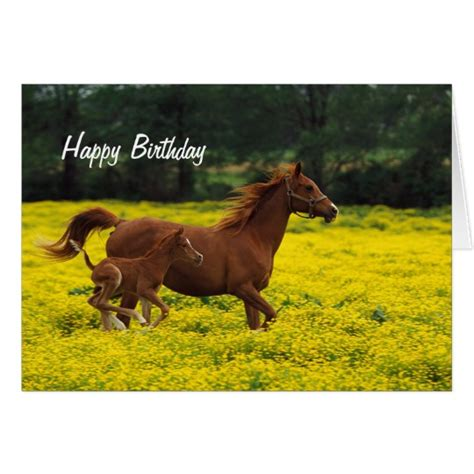 Birthday Cards With Horses On Them Horse And Pony Happy Birthday Greeting Card Zazzle