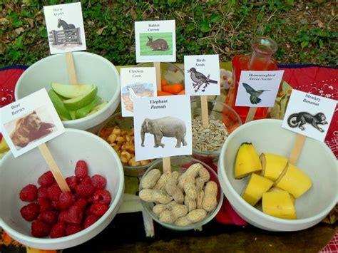 alimentazione animali domestici alimentazione animali accessori animali