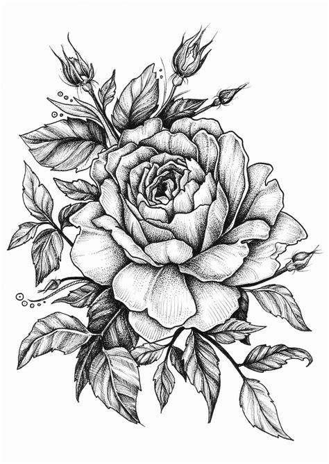 drawing tattoo roses best 25 drawing ideas on tatoo