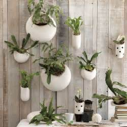 wall planter indoor shane powers ceramic wall planters contemporary indoor
