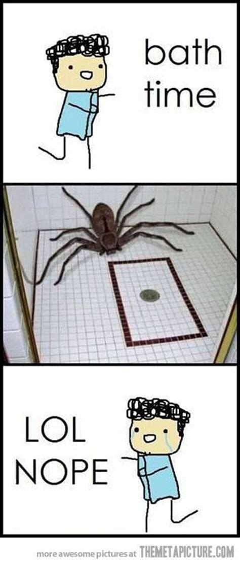 Shower Spider Meme - bath time insert huge spider lol nope this is so me