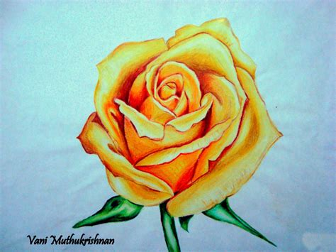 how to shade with colored pencils how to shade a with colored pencils 40 beautiful