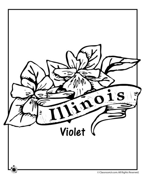 state flower coloring pages illinois state flower coloring