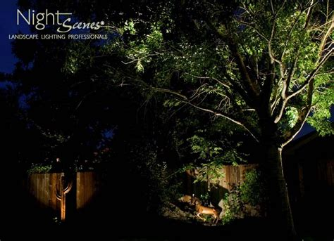 landscape lighting questions central outdoor lighting the 5 most asked outdoor lighting questions their answers