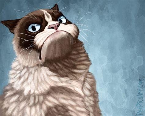 wallpaper grumpy cat grumpy cat wallpapers wallpaper cave