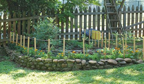 backyard berries whimsical backyard berry patch just for kids simply natural mom