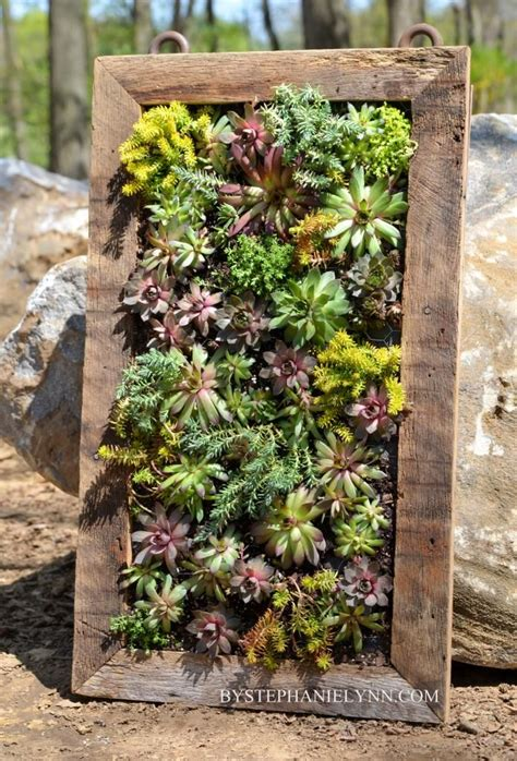 1000 ideas about wall planters on hanging