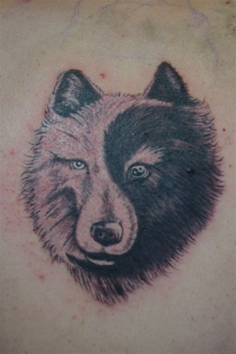 yin yang wolf tattoo wolf yin yang tattoos www imgkid the image kid has it