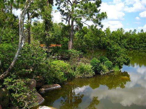 Japanese Gardens Florida by Morikami Museum Japanese Gardens Delray Fl 104