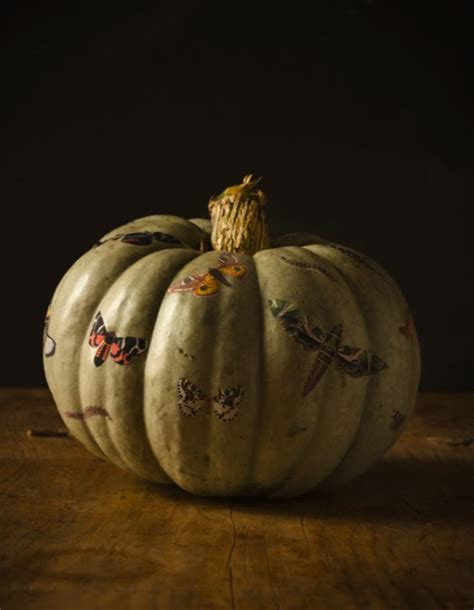 Decoupage Pumpkin - do it yourself weddings butterfly wedding theme see this