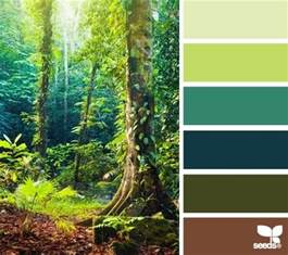 forest colors color forest palette color palettes