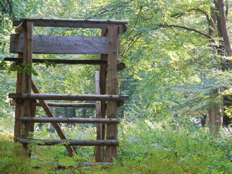 Feuerstellen Nrw by Verhalten Im Wald Wald Holz