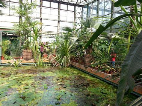 Botanical Gardens Sightseeing Bucharest Metro Botanical Garden