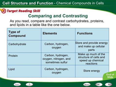 carbohydrates and lipids compare and contrast cell structure and function