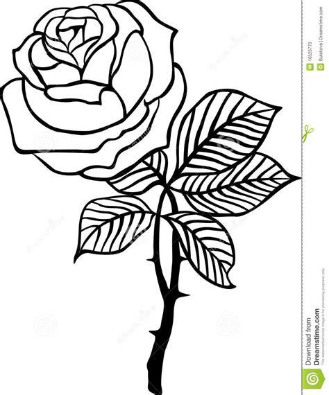 imagenes en blanco y negro de rosas vector color de rosa del negro ilustraci 243 n del vector