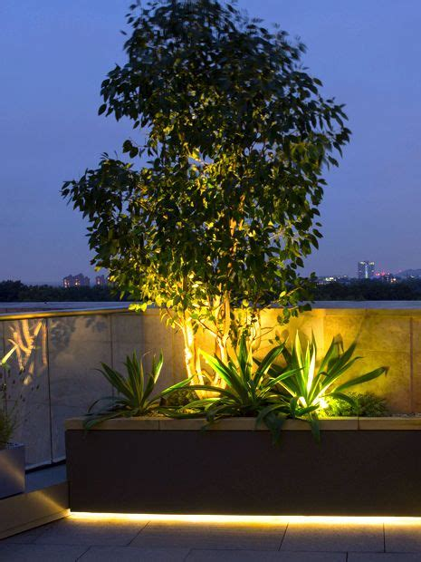 roof terrace planting ideas modern rooftop design