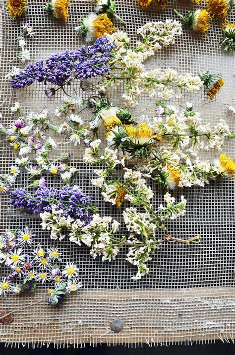 fiori secchi profumati fiori secchi profumati free floreali with fiori secchi