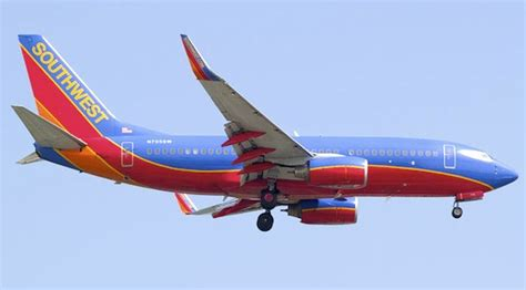 southwest airlines dogs southwest airlines pet policy petswelcome