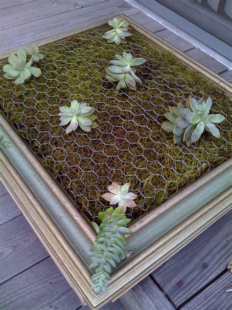 diy framed vertical succulent garden 1001 gardens