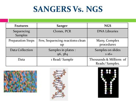 illumina ngs sequencing next generation sequencing