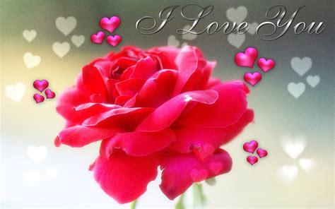 wallpaper flower i love you top 10 flower i love you wallpaper