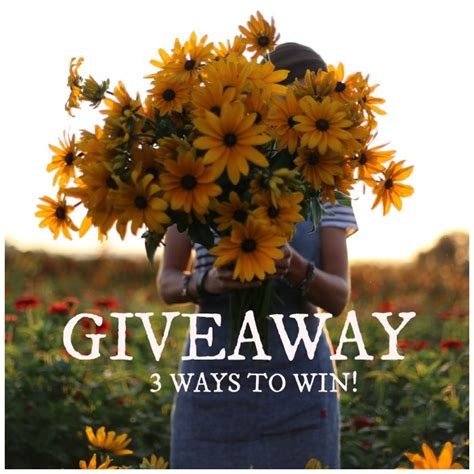 Second Life Account Giveaway - giveaway eyes open photography e course floret flowers