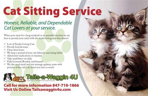 sitting services craigs list wheeling il