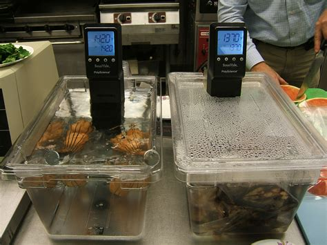 Sous Vide Sousvide Tool Home Made file sous vide cooking jpg wikimedia commons