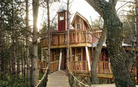 tree house master epic s treehouse is featured on animal planet s treehouse masters cuningham group