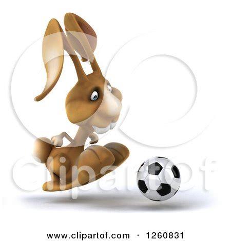 brown bunnies maserati free schnuffel snuggle bunny song wallpaper the