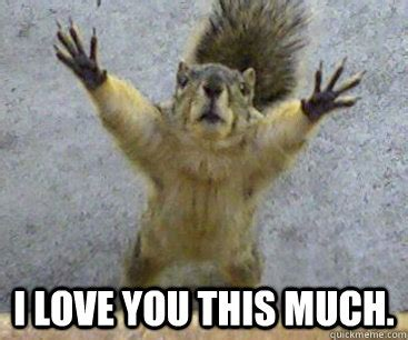 I Love You This Much Meme - i love you this much meme 100 images 20 very sweet and