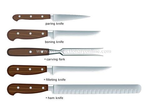 exles of kitchen knives the shape and size of kitchen