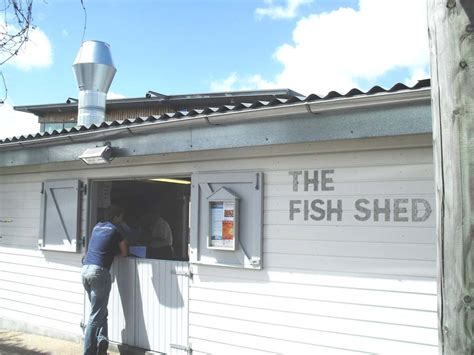 Fish For Shedding by Fish Shed