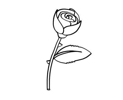 imagenes de una rosa para dibujar faciles rosa dibujo para colorear e imprimir