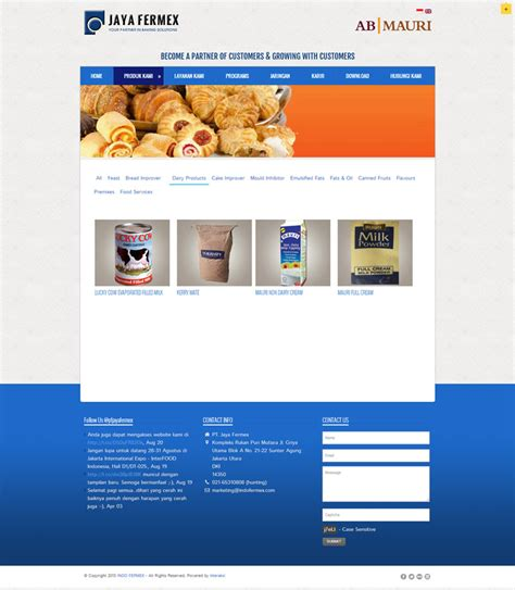 web design agency jakarta jaya fermex indonesia web design agency indonesia web