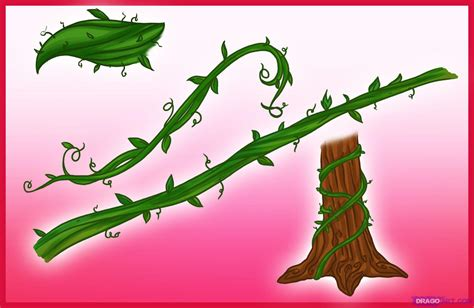 Drawing Vines by How To Draw Vines Step By Step Trees Pop Culture Free