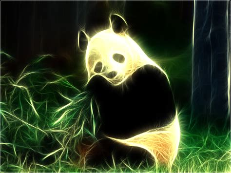 imagenes animal x pandas pandas wallpaper 16573302 fanpop