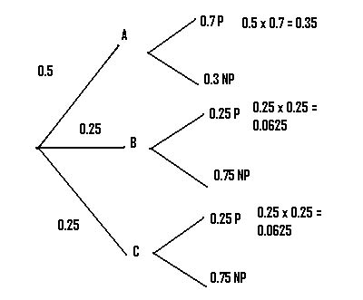how to make a tree diagram in math probability tree diagrams exles how to draw in easy