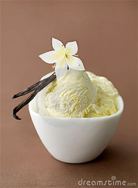 vanilla  ice cream   bowl royalty  stock images