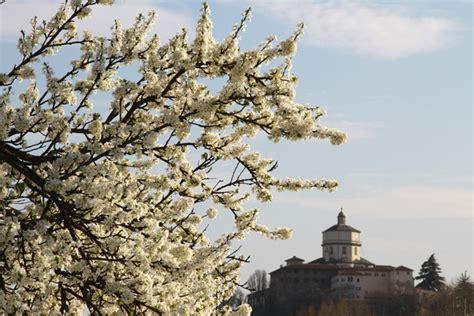 la primavera bussa alle porte