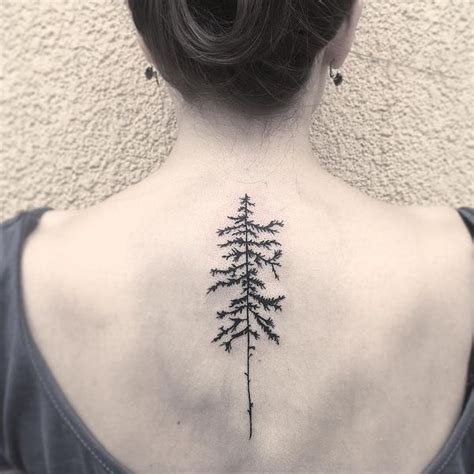 aspen tree tattoo designs tree tattoos designs bonsai redwood pine weeping