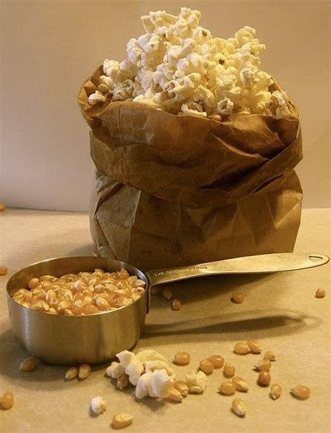 Popcorn In Brown Paper Bag - gourmet popcorn using a brown paper bag cecilia