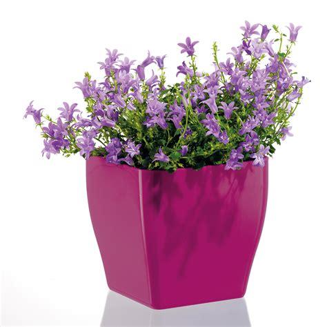 Dikel Outer 1 2 floristikmarkt24 de blumentopf living eckig kaufen