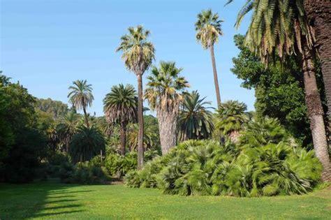 giardini botanici roma le meraviglie dell orto botanico italia in viaggio