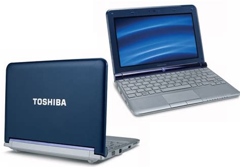 Lcd Toshiba Satellite Mini Nb300 Nb305 Dc02000zf10 toshiba nb305 notebook and netbook
