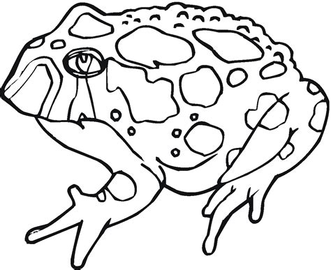 printable toad coloring pages coloring me